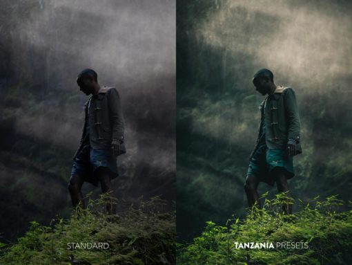 Tanzania Jungle Lightroom Presets