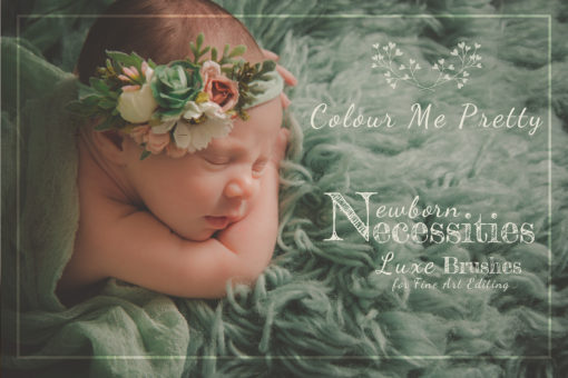 Newborn Skin Necessities Luxe Brush Collection for Lightroom