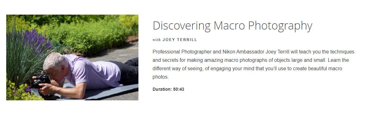 discovering macro photography course nikon
