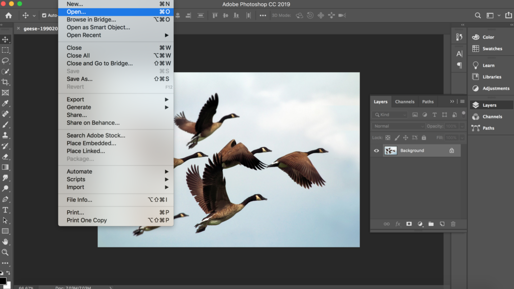 How to Make Photoshop Brushes from Your Photos