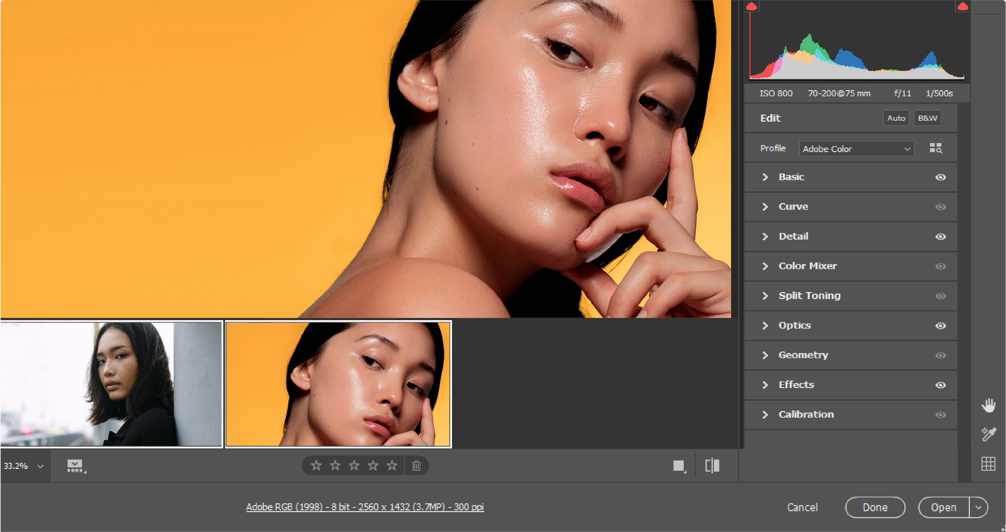 adobe camera raw updates june 2020
