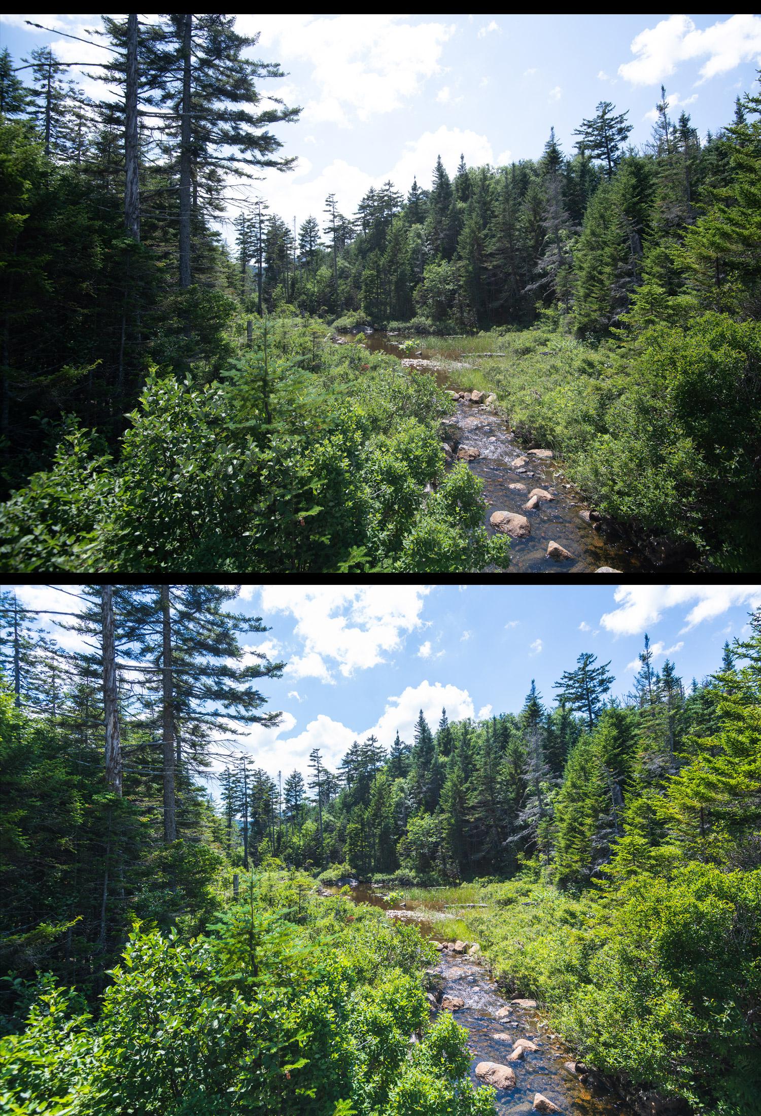 final landscape before after edit