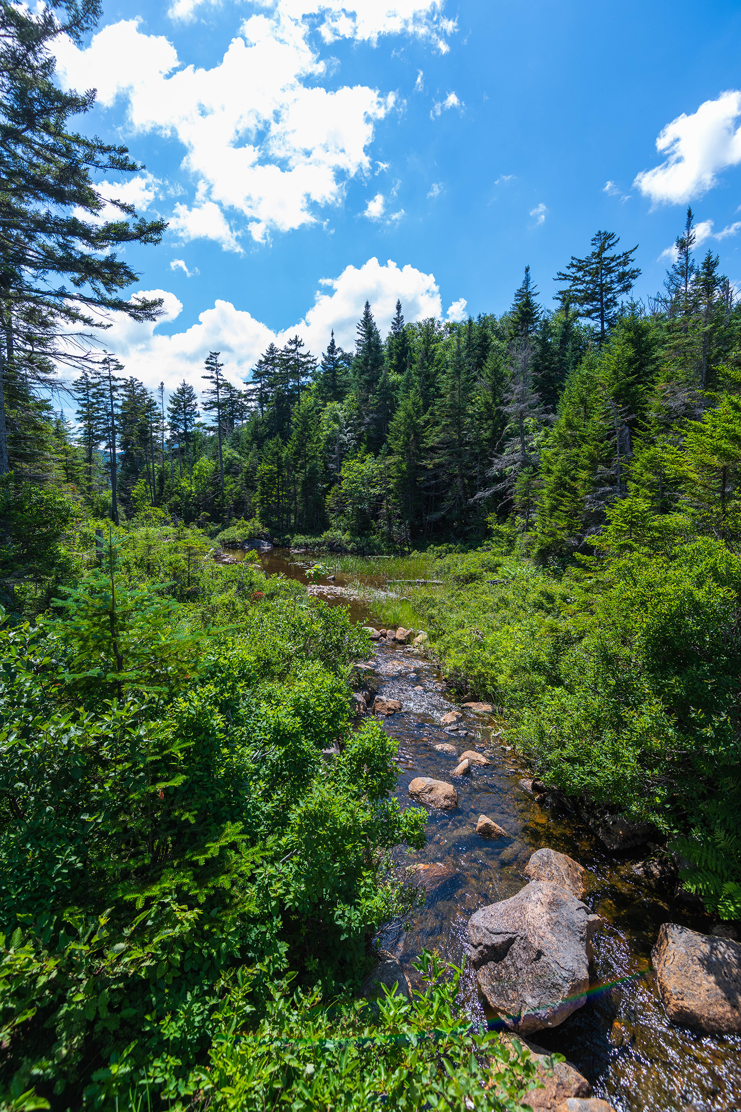 streams through the white mountains, New Hampshire