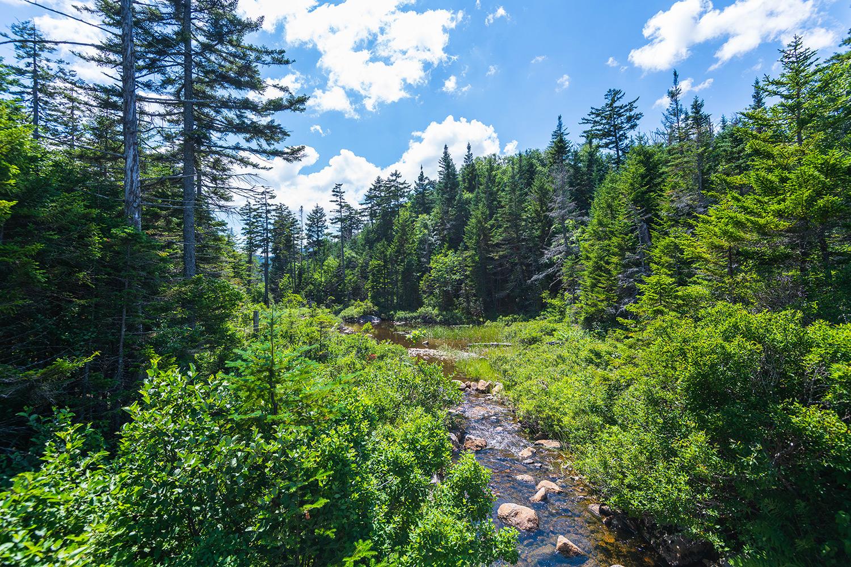 New Hampshire Hiking Adventures around Lonesome Lake