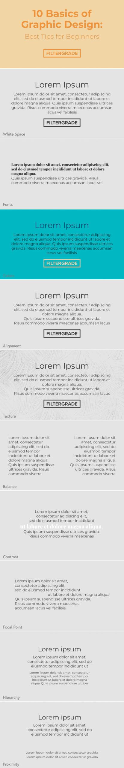 Basics of Graphic Design Infographic