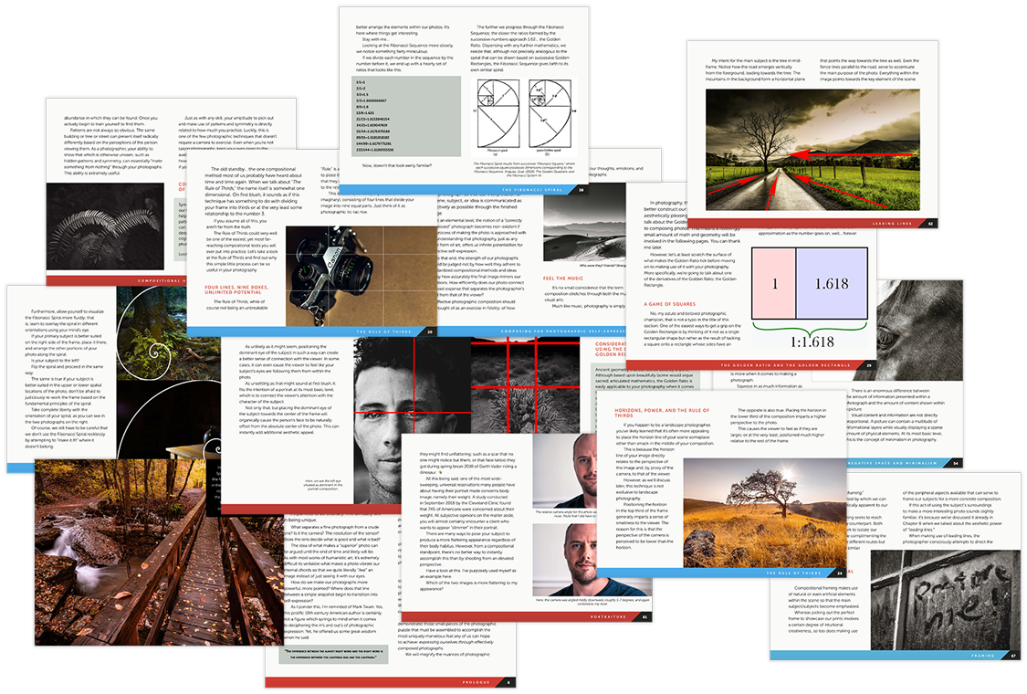 contrastly photographic composition ebook