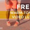 1 FREE Warm Tone Video LUTs - FilterGrade