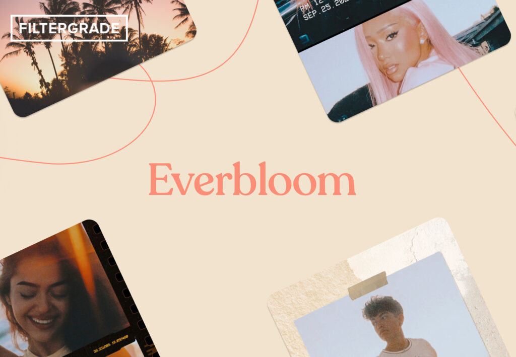 Everbloom cover image - FilterGrade