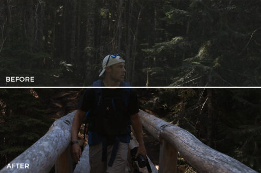 10 Kal Visuals Nature LUTs Bundle - FilterGrade