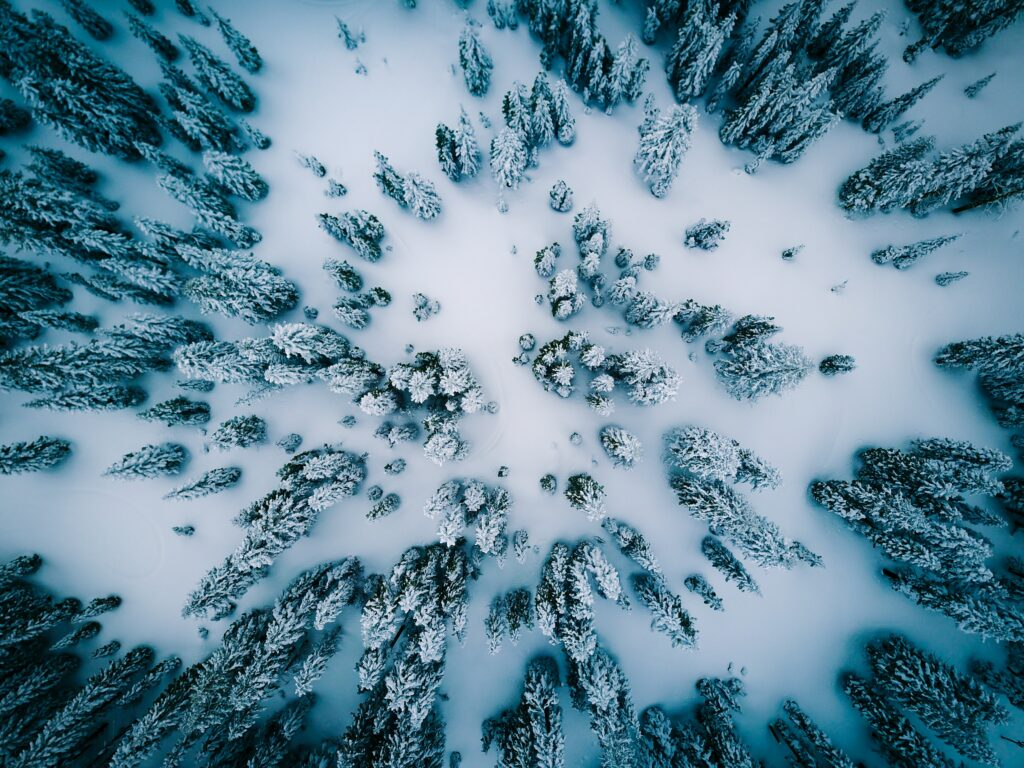 24 Wonderful Winter Photos to Inspire You