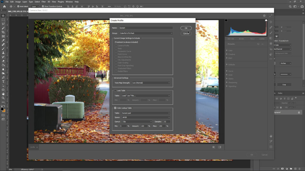 How to Use LUTs with Adobe Camera Raw