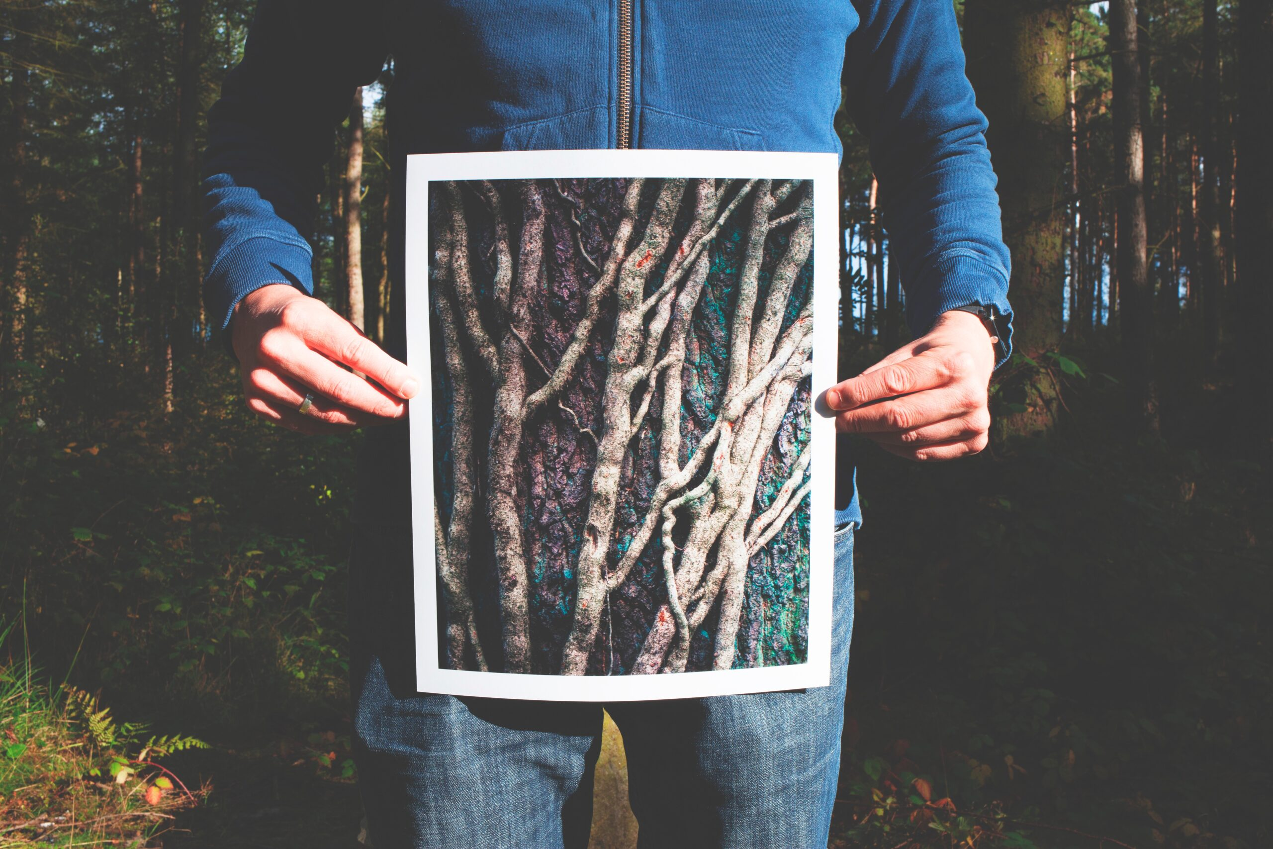 person holding print